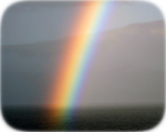 Hawaiian rainbow - Copyright R Konig